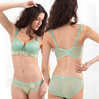 Women Plus Size Bra and Panties Set