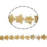 Sea Shell Beads, Star, original color, 10x3mm, Hole:Approx 0.5mm, Length:16.5 Inch, 46PCs/Bag, Sold By Bag