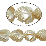 Sea Shell Beads, Leaf, original color, 12x13x5mm, Hole:Approx 1mm, 35PCs/Strand, Sold Per 15.5 Inch Strand