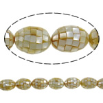 Sea Shell Beads, Oval, yellow, 19x25mm, Hole:Approx 2mm, Approx 16PCs/Strand, Sold Per 15.7 Inch Strand