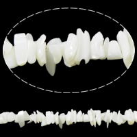 Seashell Beads, Natural Seashell, Chips, white, Hole:Approx 1mm, Length:Approx 35 Inch, Sold By Strand