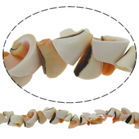 Trumpet Shell Beads, Nuggets, 10-16mm, Hole:Approx 1mm, 70PCs/Strand, Sold Per Approx 16 Inch Strand