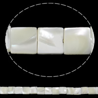 Seashell Beads, Natural Seashell, Square, white, Hole:Approx 1mm, Length:Approx 15.7 Inch, 50PCs/Strand, Sold By Strand