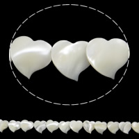 Seashell Beads, Natural Seashell, Heart, white, 14x13x3mm, Hole:Approx 1mm, Length:Approx 15.7 Inch, 31PCs/Strand, Sold By Strand