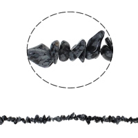 Snowflake Obsidian Bead, Chips, 5-8mm, Hole:Approx 0.8mm, Length:Approx 34.6 Inch, Approx 260PCs/Strand, Sold By Strand