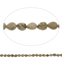Picture Jasper Beads, Teardrop, 8x10x5mm, Hole:Approx 1mm, Length:Approx 15 Inch, Approx 40PCs/Strand, Sold By Strand