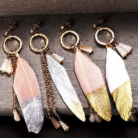 Fashion Feather Earring , with Resin & Zinc Alloy, brass post pin, gold color plated, for woman & gold accent, more colors for choice, 15x100mm, Sold By Pair