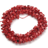Natural Coral Beads, Dog Bone, red, 4x8mm, Hole:Approx 1mm, Length:Approx 15.5 Inch, Approx 150PCs/Strand, Sold By Strand