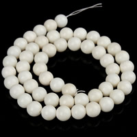 Natural Coral Beads, Round, different size for choice, white, Hole:Approx 1mm, Length:Approx 15.5 Inch, Sold By Strand