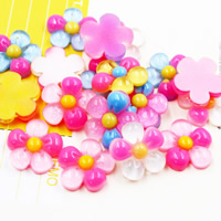 Mobile Phone DIY Decoration, Resin, Flower, flat back & colorful powder, mixed colors, 20x20mm, Sold By PC
