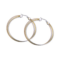 Stainless Steel Hoop Earring, plated, for woman, 57x57x1mm, Sold By Pair